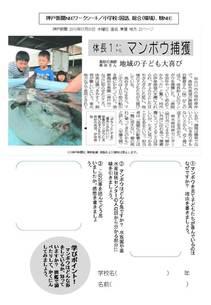 加古川沖でマンボウ
