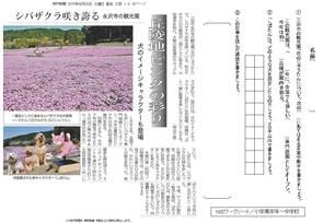 丘陵地ピンクの彩り 「シバザクラ」