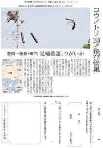 コウノトリ 150キロ飛び営巣