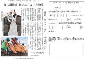 加古川漁協、稚アユ3万匹を放流